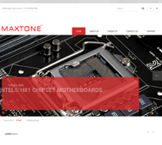 Maxtone Electronics Competitors, Revenue and Employees
