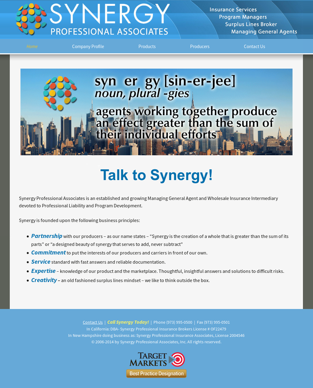 Synergy Professionals Associates Competitors, Revenue and