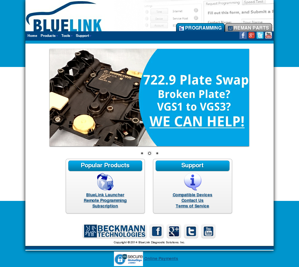 Bluelink Diagnostic Solutions Competitors, Revenue and Employees