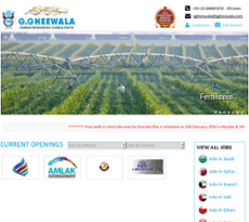 G gheewala Human Resources Consultants Competitors, Revenue