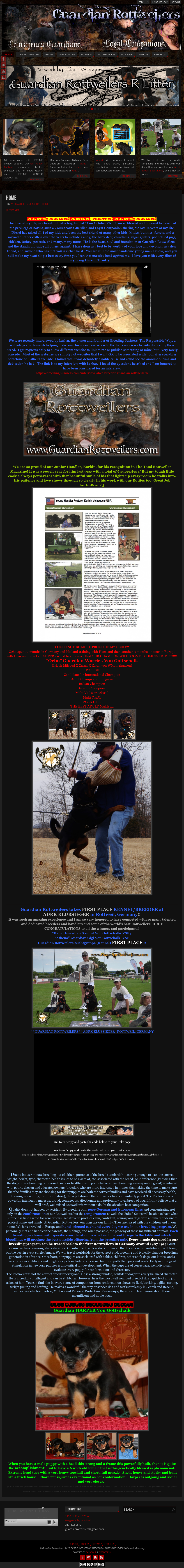 Guardian Rottweilers Competitors Revenue And Employees Owler