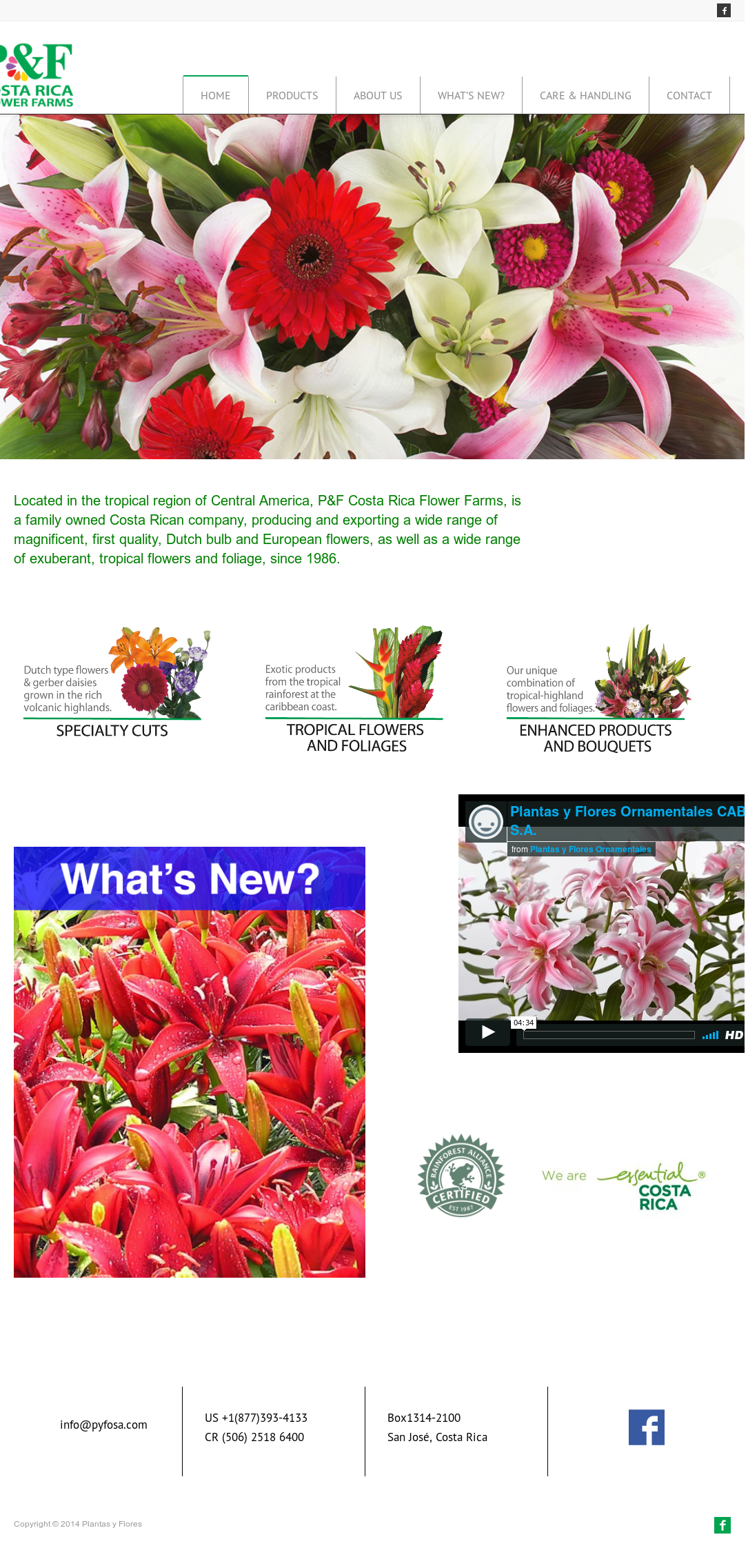 Pf Costa Rica Flower Farms Website History