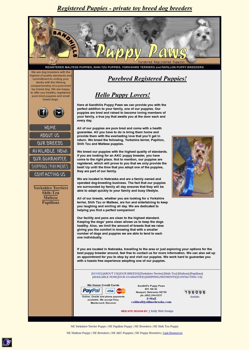 Sandhills Puppy Paws: Yorkshire Terrier And Maltese Dog Breeder