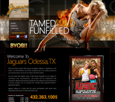 Jaguars Odessa Tx >> Jaguars Odessa Competitors Revenue And Employees Owler