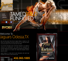 Jaguars Odessa Tx >> Jaguars Odessa Competitors Revenue And Employees Owler Company