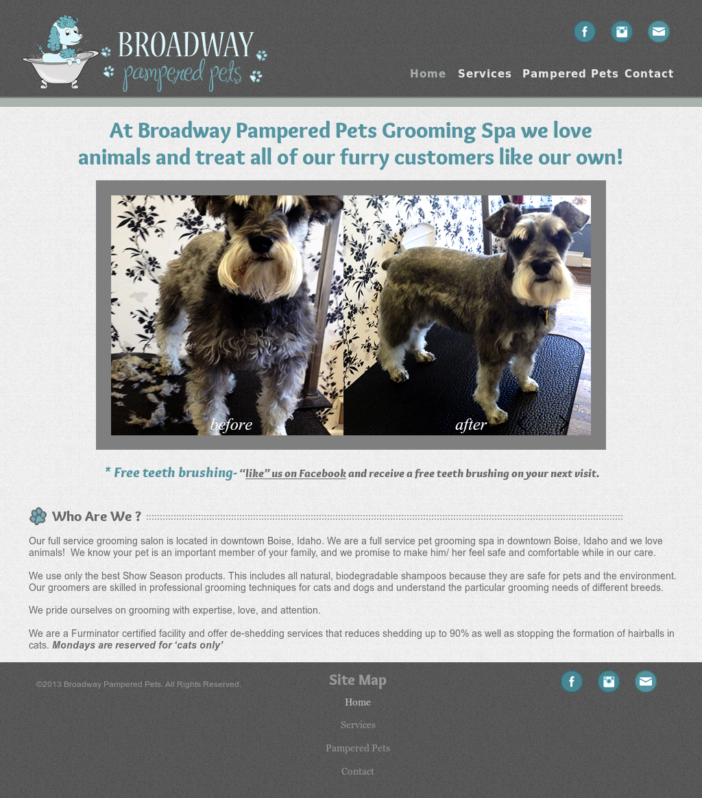 Broadway Pampered Pets Grooming Spa Competitors, Revenue and