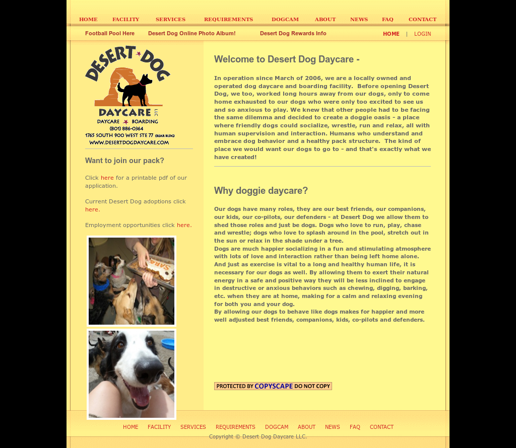 Desert dog daycare competitors revenue and employees for Dog boarding website