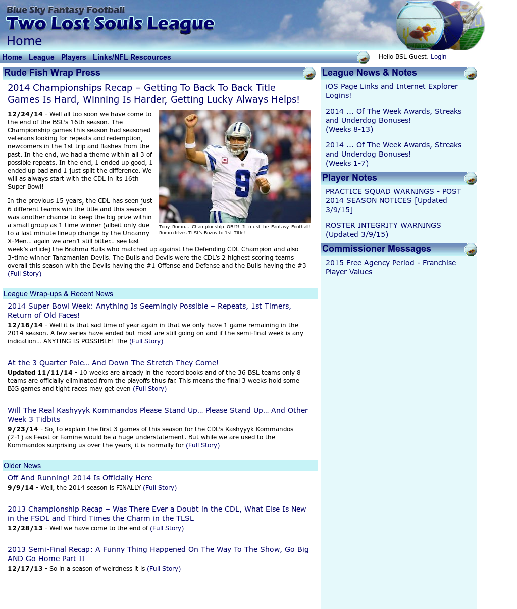 Blue Sky Fantasy Football Leagues Competitors, Revenue and
