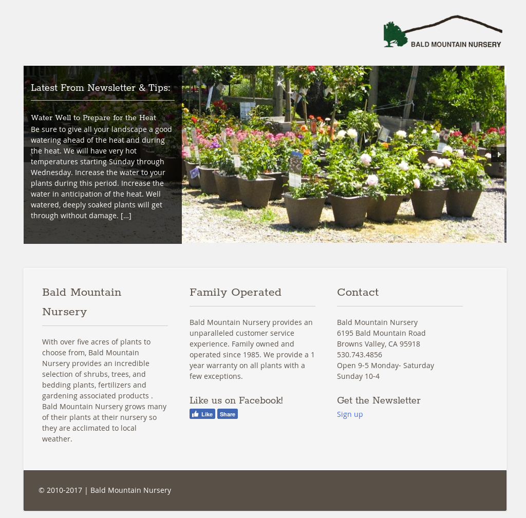 Bald Mountain Nursery S Website Screenshot On Jun 2017