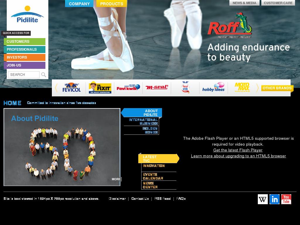 Pidilite Competitors Revenue And Employees Owler Company Profile