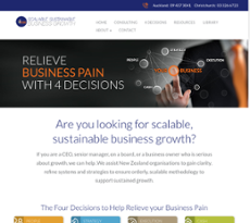Scalable Sustainable Business Growth Competitors, Revenue and