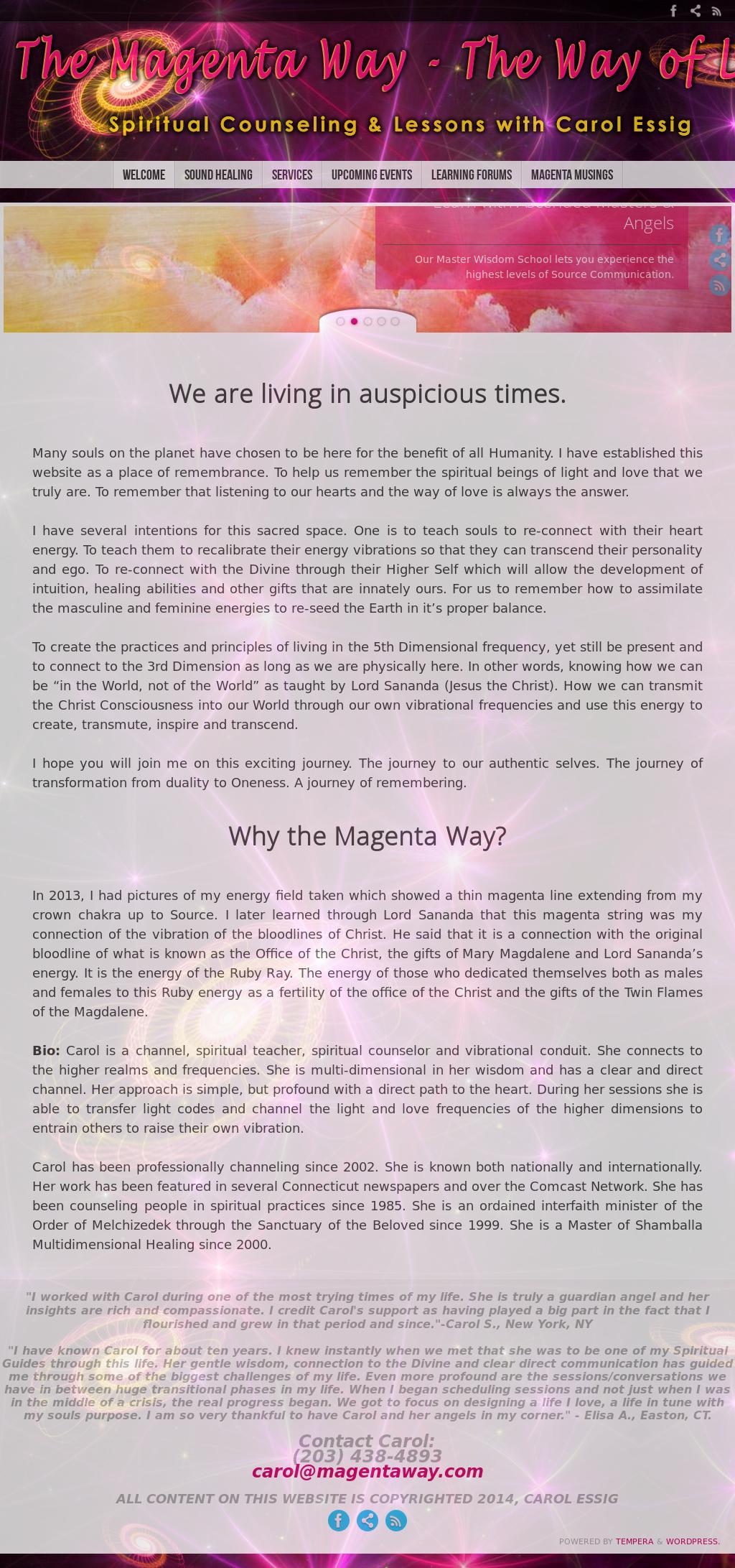 The Magenta Way With Carol Essig Competitors, Revenue and