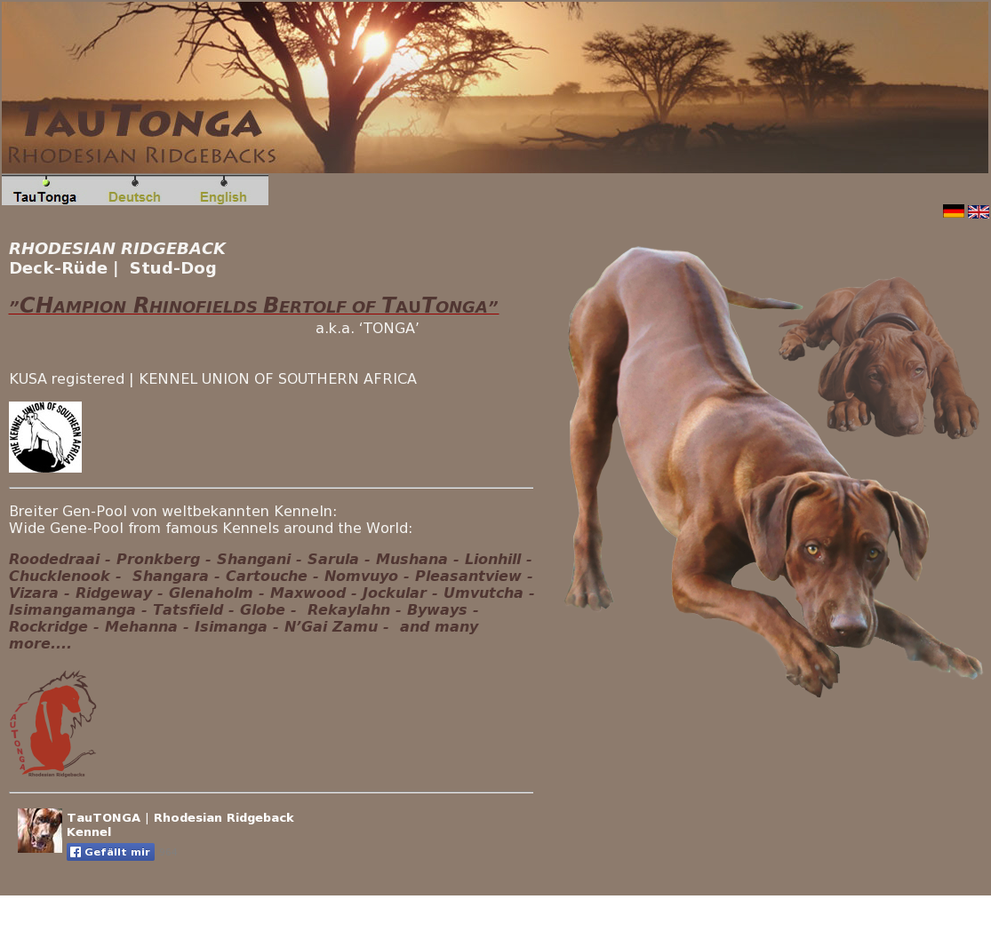Tautonga | Rhodesian Ridgeback Kennel Competitors, Revenue