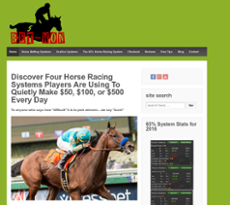 Bet-won Horse Racing Systems Competitors, Revenue and