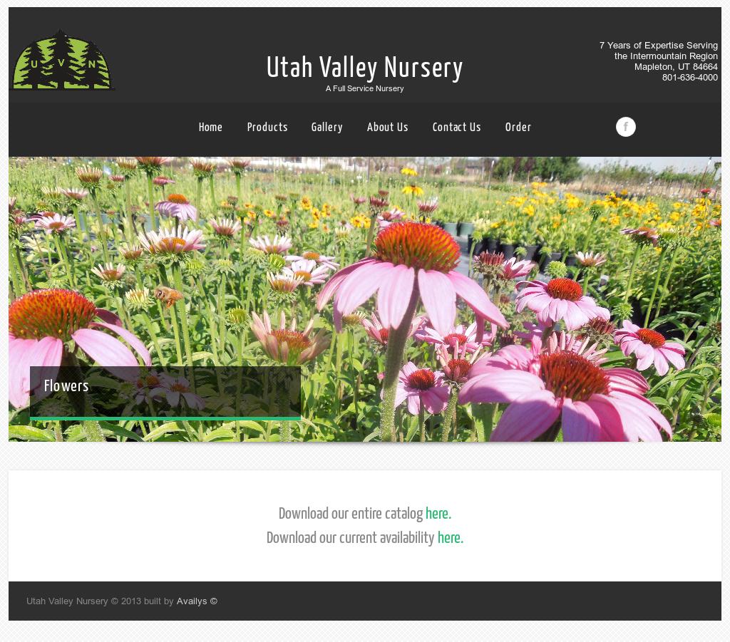 Utah Valley Nursery Website History