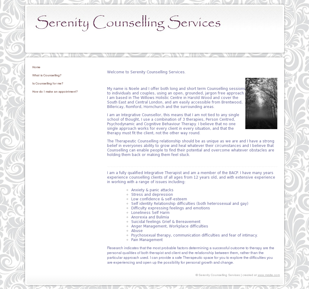 Serenity Counselling Services Competitors, Revenue and