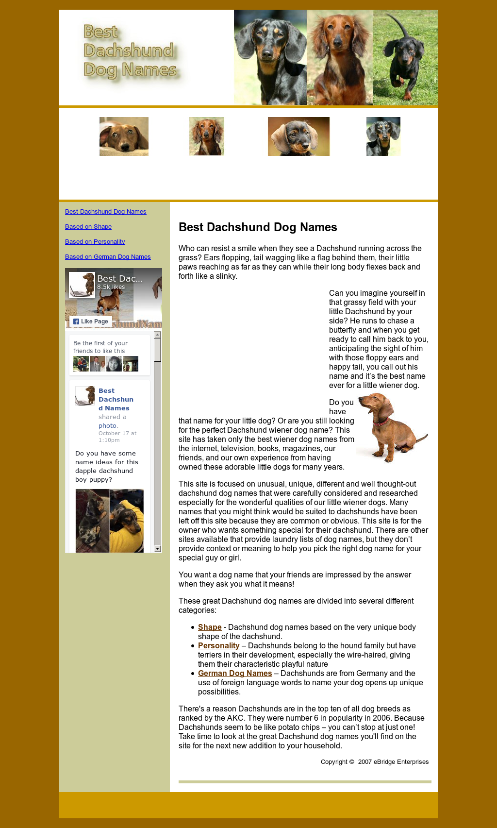 Best Dachshund Names Competitors Revenue And Employees Owler