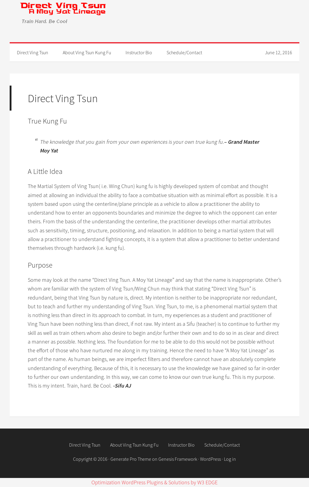 Direct Ving Tsun. A Moy Yat Lineage Competitors, Revenue and Employees - Owler Company Profile