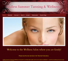 Endless Summer Tanning Wellness Competitors Revenue And Employees