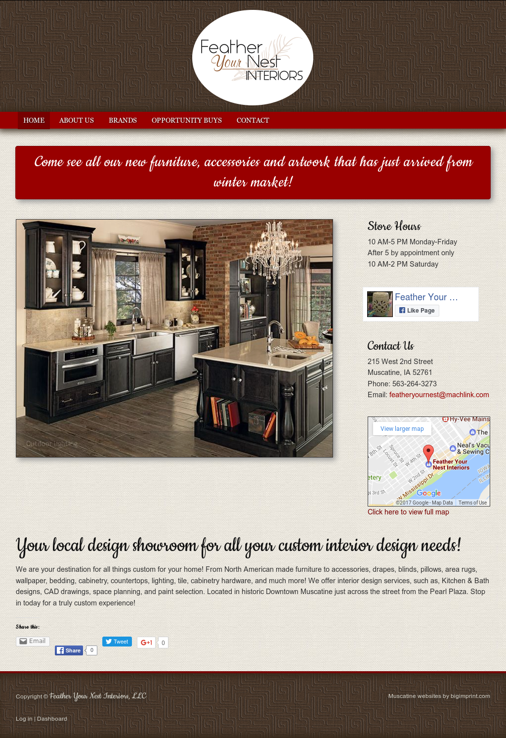 Feather Your Nest Interiors Website History