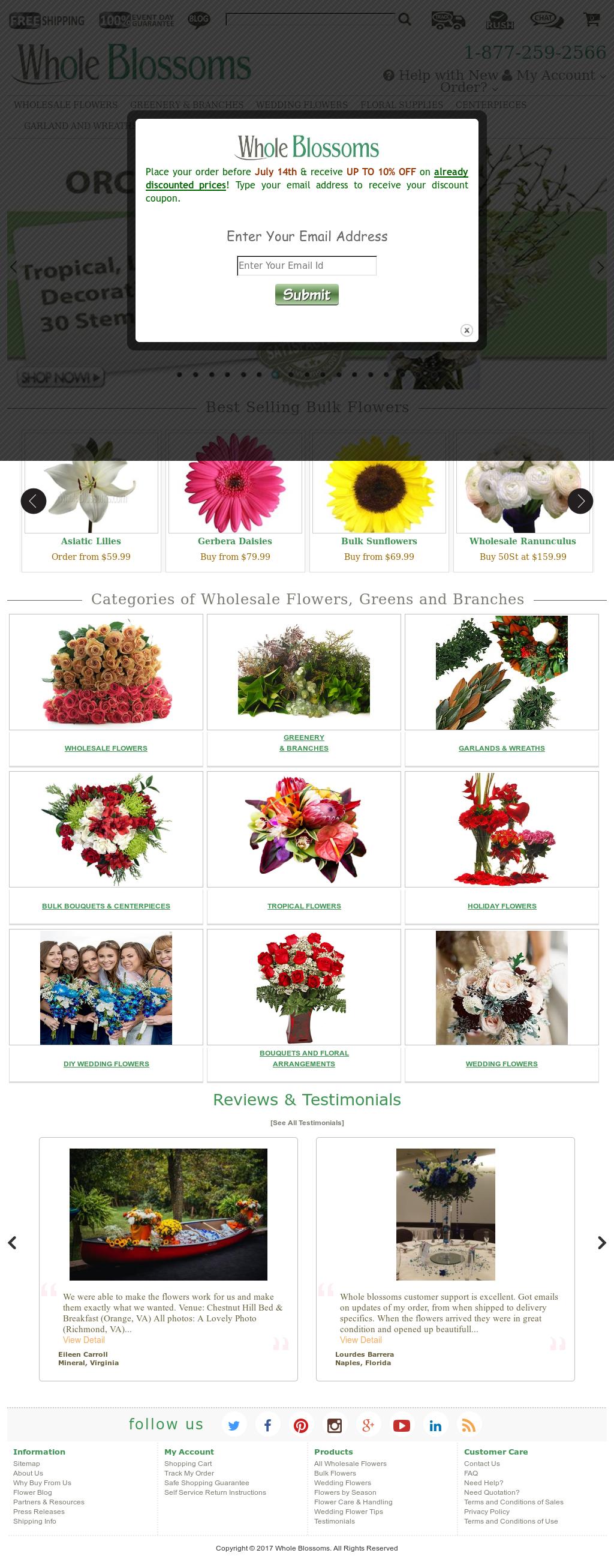 WholeBlossoms Competitors, Revenue and Employees - Owler Company Profile