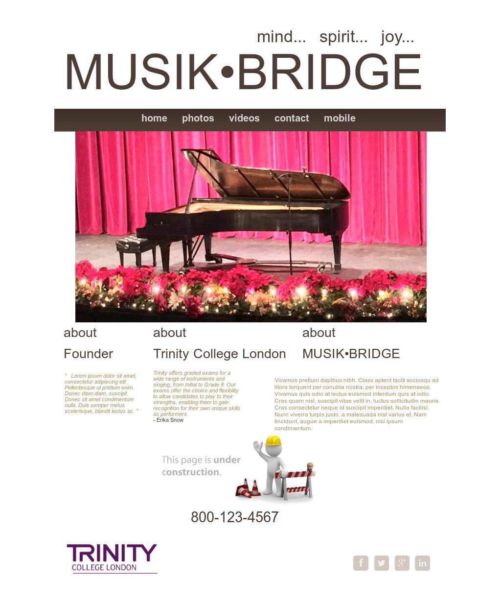 Musik Bridge Competitors, Revenue and Employees - Owler Company Profile