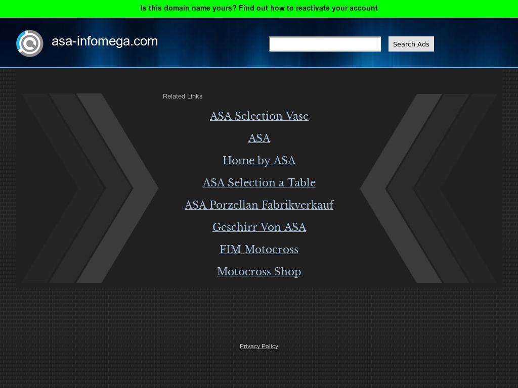 Asa Infomega Competitors Revenue And Employees