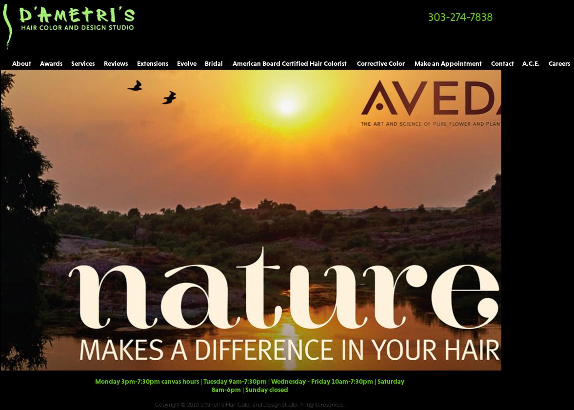 D Ametri S Hair Studio Competitors Revenue And Employees