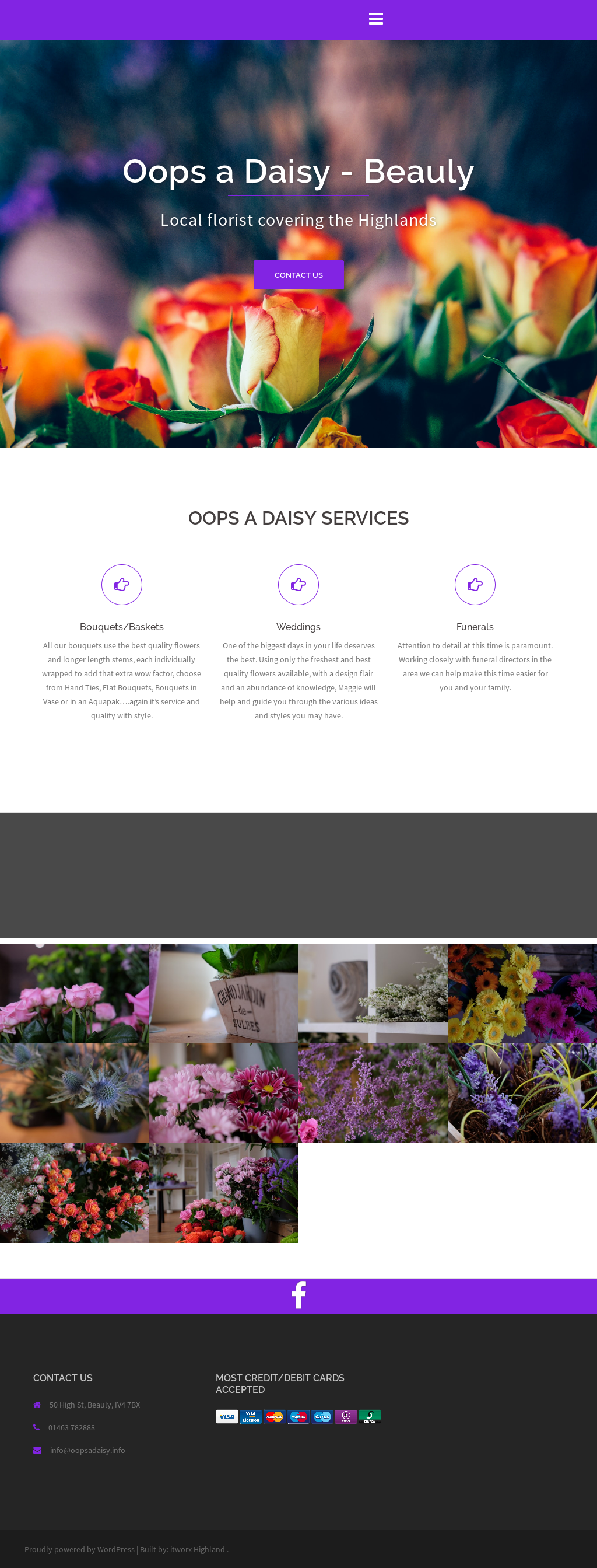 Oops A Daisy Flowers Limited Cirencester Best Image Of Flower