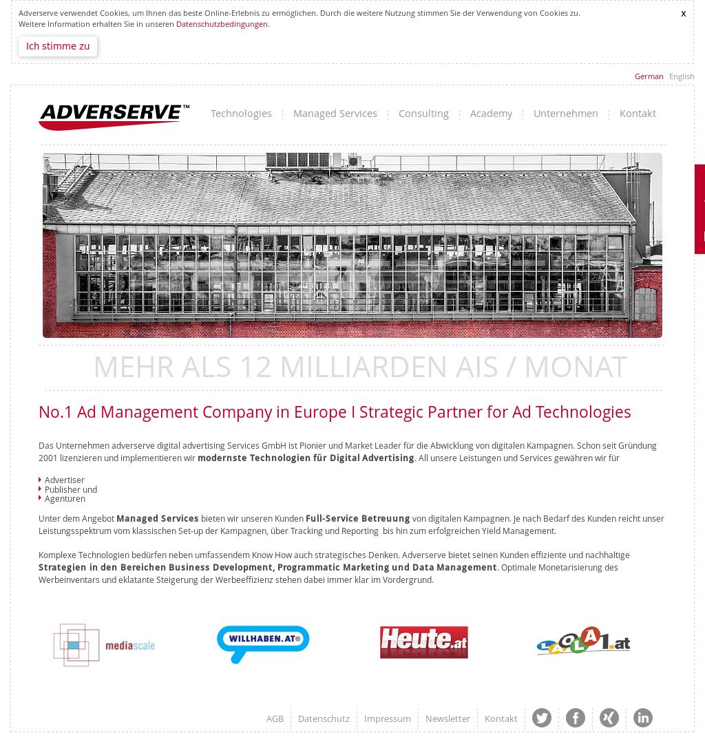 Adverserve Digital Advertising Services Competitors, Revenue