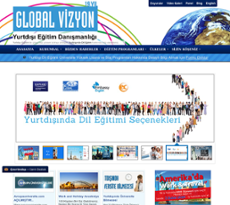 Global Vizyon Competitors Revenue And Employees Owler