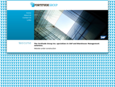 Fortitude Group website history