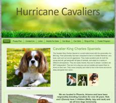 Cavalier website history