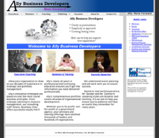 Ally Business website history