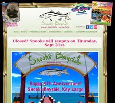 Snooks website history
