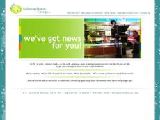Salmon Borre Group website history