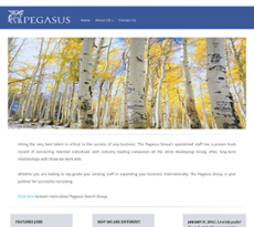The Pegasus Group website history