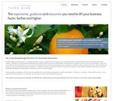 Third Wing Business Strategies website history