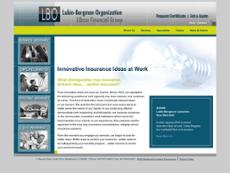Lubin-Bergman Organization website history