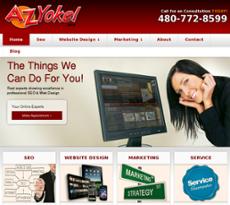 AZYokel website history