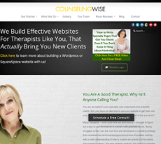 Counseling Wise website history