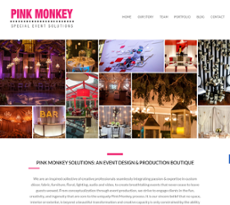 Pink Monkey Solutions website history