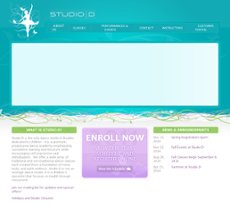 Studio D website history