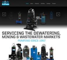 Mody Pumps website history