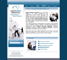 Expert Business Solutions website history