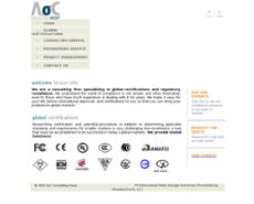 AoC Consulting Group website history