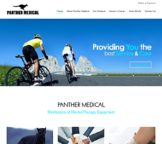 Panther Medical website history