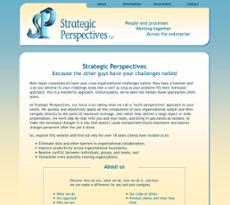 Strategic Perspectives website history