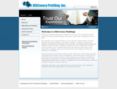 Discovery Profiling website history