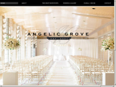 Angelic Grove website history